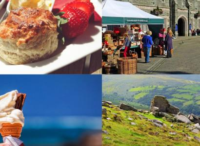 Top 5 things Limitless loves about Devon!