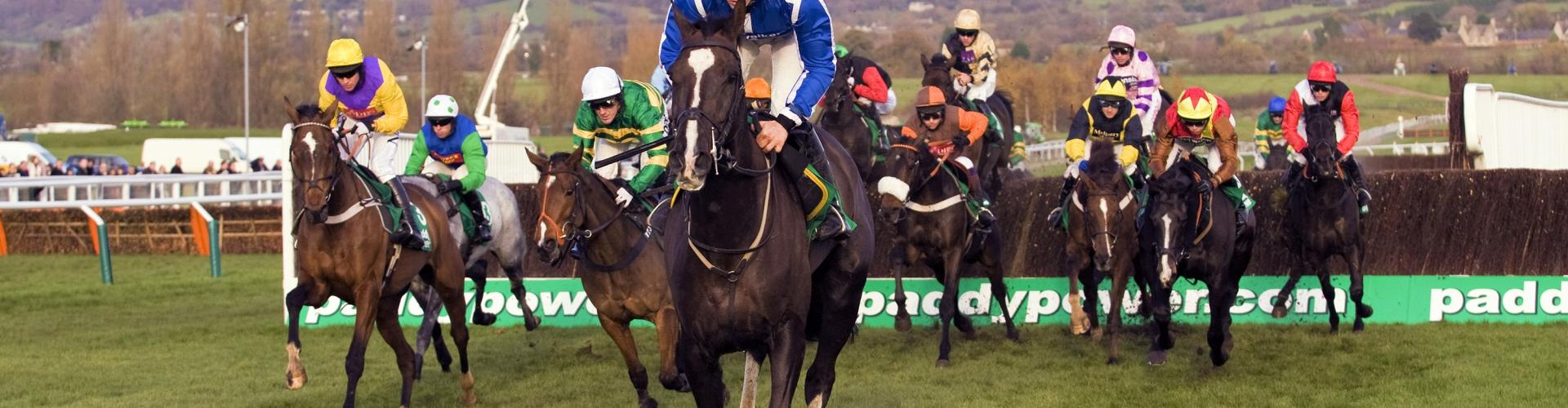 Cheltenham Sam Twiston Davies leads the field over fences in the fourth race at Cheltenham Racecourse in Cheltenham Gloucestershire 2