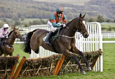 Itinerary - A day at Cheltenham Races