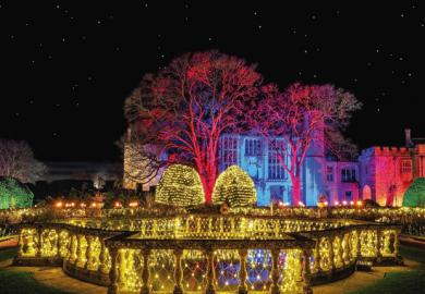 Itinerary - Magical Lights at Sudeley Castle