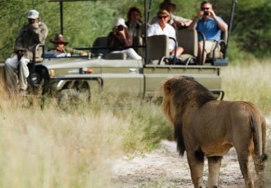 Itinerary - The African Big 5